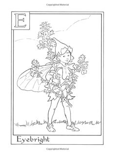 Amazon.com: Flower Fairies Alphabet Coloring Book (9780723264965): Cicely Mary Barker: Livres