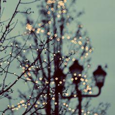 Winter-Fotografie Naturfotografie Mint Green Home von ellemoss