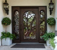 House Doors, Exterior Doors With Sidelights, House Gate Design, Beautiful Doors, Entrance Gates Design, Craftsman Style House Plans, House Designs Exterior, Door Glass Design, Front Door Design