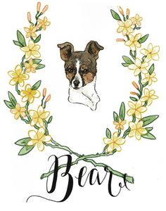 Bear by Lauren Moyer, via Behance