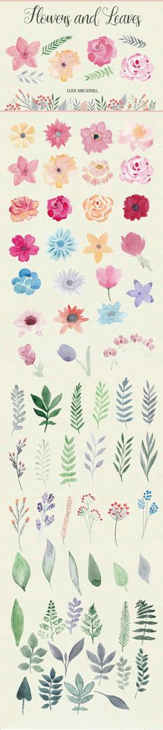 This pack contains more than 40 watercolor flowers, about 40 floral elements (le. This pack contains more than 40 watercolor flowers, about 40 floral elements (leaves, branches), 5 Painting Inspiration, Art Inspo, Design Inspiration, Illustration Blume, Watercolor Illustration, Motif Floral, Floral Flowers, Simple Flowers, Floral Border