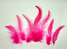 """Pretty HOT PINK rooster hackle feathers dyed. 2-6"""" avg length. A 7 gram pkg (150 ct avg) for just $2.49  Great for fly tying, regalia and crafting. #hacklefeathers #feathers #hotpink #regalia #roosterfeathers"""
