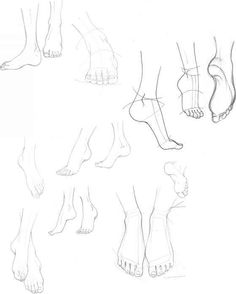 The Foot And Ankle Outline