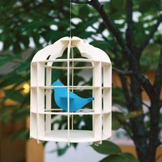 This DIY bird cage is fun for all ages and will be a unique addition to your home. 125 x 125 x 160 mm. Please allow 2 weeks for shipping.