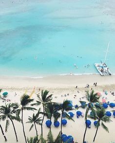 Waikiki from above 🌴🌴 Lucky We Live Hawaii moment with 📷: Hawaii Life, More Pictures, Oahu, Coastal, How Are You Feeling, In This Moment, Lifestyle, Live, Plants