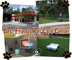 Best Friends Pet Care Center is the place to board your animal on Disney property.