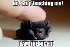 Stop touching me!