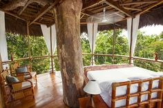 Treehouse hotels at Treehouse Lodge | Glamping.com #treehouses