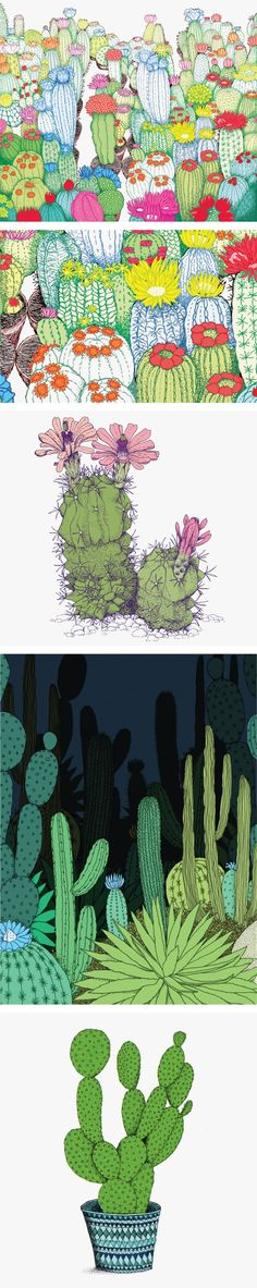 CACTI SERIES - Annie Davidson - Graphic Design