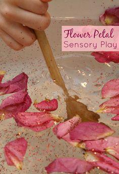 Flower Petal Sensory Play. Fun way to use old flower petals