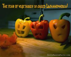 dump a day amazing facts 20 pics - Crazy Halloween Facts