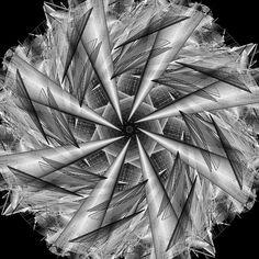 Craze: pinwheel in motion ckm