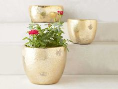 Adding plants and flowers to your home is a super simple way to add elegance and class. Ever been over to a friend's home and spent minutes admiring their collection of flora and fauna beautifully housed in cute planters? Us, too. Take matters into your own hands and add some greenery to your space with the top ten planters available. What you fill them with is up to you, but these ten planters come in a variety of sizes and are perfect for housing nearly any plant you've got your eye on…