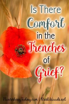Are you consumed by grief? God wants to heal you and bring you to a place of overcoming. He wants to give you comfort in the trenches of grief.