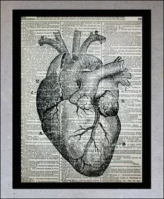 Anatomical Heart - Old book page, Vintage Medical Drawing - Book Page Art Print - Human Heart. $10.00, via Etsy.