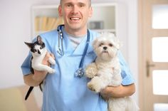 Gene Rinderknecht is an advocate for the fair treatment of all animals.