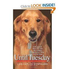 Until Tuesday by Luis Carlos Montalvan
