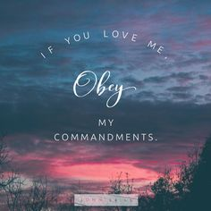 If you love me, obey my commandments. Encouraging Bible Verses, Scripture Art, Bible Verses Quotes, Scriptures, John 15 14, Special Friend Quotes, Writing Words, Love You, My Love