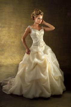 Here comes the bride on pinterest wedding gowns for Beauty and the beast style wedding dress