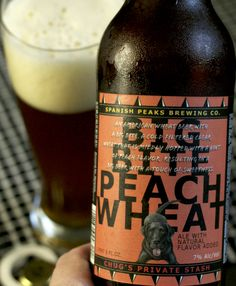 Big Bite Peach Wheat from Spanish Peaks. Bye bye, Summer! | Beer review by pathofbrews.