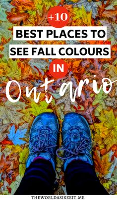 Fall in Ontario is a magical time of year to get out exploring! Here are 10 places to see Ontario fall colours - from scenic fall drives to epic hikes. Vancouver, Travel With Kids, Family Travel, Quebec, Toronto, Canadian Travel, Canadian Rockies, Visit Canada, Canada Eh