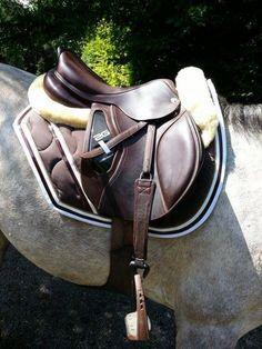 7 Meilleures Images Du Tableau Tapis Equitation Horses Equestrian