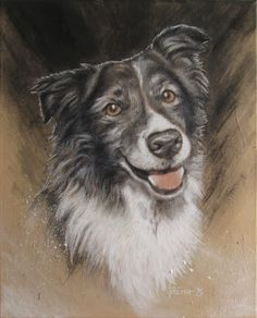 Portrait of Border Collie 'Cayenne' - Acrylics and colored pencils on canvas