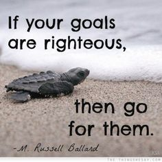 If your goals are righteous then go for them