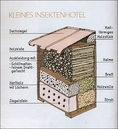 Bildergebnis für insektenhotel bauanleitung - #Bauanleitung #Bildergebnis #für #hotel #Insektenhotel Dog Friendly Garden, Insect Crafts, Bug Hotel, Mason Bees, Beneficial Insects, Permaculture, Bird Houses, Garden Inspiration, Bugs