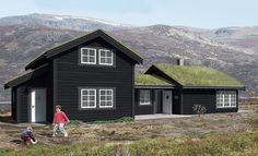 Znalezione obrazy dla zapytania norges hus