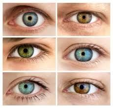 eye makeup for saggy eyelids & eye makeup saggy eyelids . eye makeup for saggy eyelids . eye makeup tutorial for saggy eyelids . eye makeup for saggy eyelids eyeshadows Gray Eyes, Brown Eyes, Blue Eyes, Yellow Eyes, Pretty Eyes, Beautiful Eyes, Amazing Eyes, Saggy Eyelids, Eye Color Chart