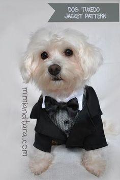 dog-tuxedo-jacket-pattern