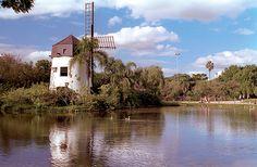 Parque Moinhos de Vento |  Foto: Aline Gonçalves/PMPA |  Homenagem da Foxter Cia. Imobiliaria |  http://www.foxterciaimobiliaria.com.br