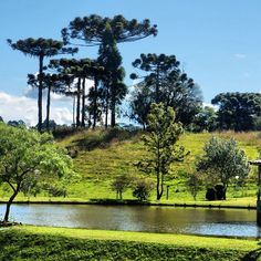 Lages - SC - Southern Brazil