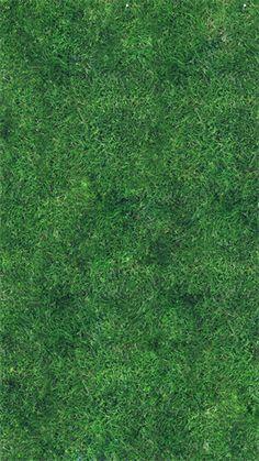 Grass Texture Wallpaper