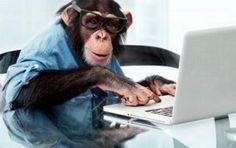 你知道你們公司的社群管理員,是人還是猴子嗎?