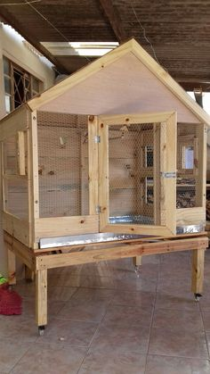 Training Your Pet Parrot Big Bird Cage, Bird Cages, Pet Chickens, Chickens Backyard, Diy Parakeet Cage, Squirrel Home, Pigeon Cage, Finch Cage, Quail Coop