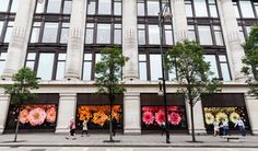 Apple takes over all 24 windows at Selfridges London - Retail Focus - Retail Interior Design and Visual Merchandising