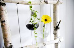 glödlampa till vas Light Bulb Vase, Glass Vase, Plants, Diy, Home Decor, Dekoration, Decoration Home, Bricolage, Room Decor