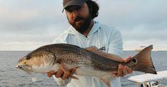 The Slam Shady Bomber Paddletail Lure Mini-Course Saltwater Fishing, Kayak Fishing, Fishing Tips, Braided Line, Lure Making, Fishing Videos, Soft Plastic