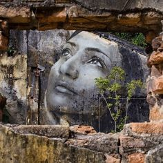 RONE Paints His 'Jane Doe' All Over Malaysia (5 pictures)