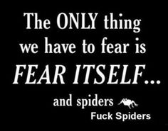 I hate spiders too