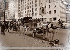 Central Park Carriage Rides by LShanksPhotography on Etsy https://www.etsy.com/listing/113700910/central-park-carriage-rides