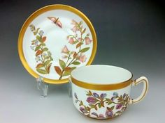 Royal Worcester  19th century
