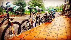 Other way to do #theway #bikes #bicicleta #portugueseway #elcaminodesantiago #elcamino #santiagoway #saintjacobway #pilgrims #peregrinos #galicia #freelance #estilodevida #lifestyle #life #live #love #vida #vivir #amor #tourguide #experiencia #experience #travelagency #agenciadeviaje #travel #viajar http://tipsrazzi.com/ipost/1512456236536104020/?code=BT9Uu8NDwRU