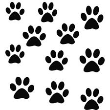 Purchase yourself a bunch of Cat wall decals from Zazzle! Our wall stickers are great for any room in your home or office! Wall Stickers, Wall Decals, Cut Image, Paw Patrol Party, Cat Wall, Mandala, Snoopy, Cats, Paw Prints