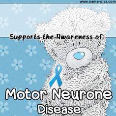 1000 Ideas About Motor Neuron On Pinterest Genetic