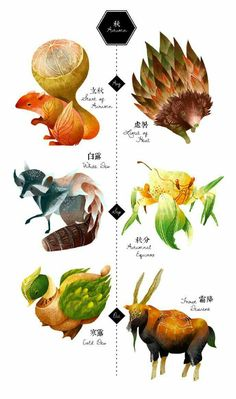 The 24 Solar Terms - Character Design - 24 solar term into animal character designs, merged with featured vegetables, fruits, or weather ch - Pretty Art, Cute Art, Fantasy Creatures, Mythical Creatures, Cute Drawings, Animal Drawings, Illustration Photo, Wow Art, Creature Concept