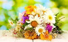 There are thousands of types of flowers with a great variety of colors.
