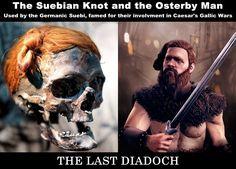 Sofi the Viking — thelastdiadoch: The Suebian Knot and the...
